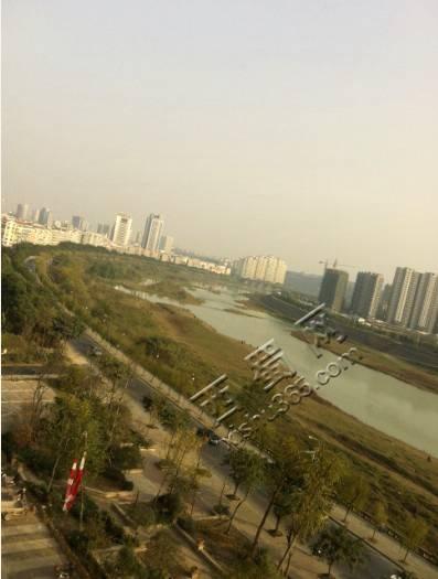 由于临江,所以这个视野效果相当好!真心喜欢!