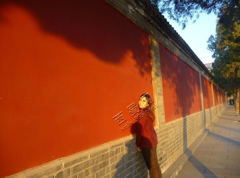 4年,他终于在绵阳铁牛广场给我求婚了 情感天空 Powered by Discuz图片